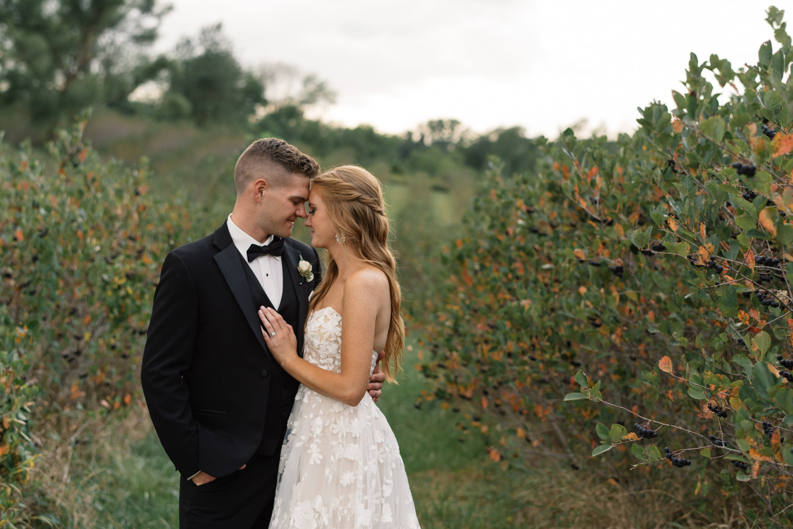 bride and groom vineyards koru berry farm wedding venue